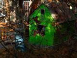 WOODED GREEN SHACK   2009