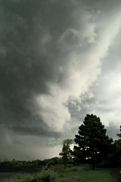 GRAVITY WALLCLOUD_2008